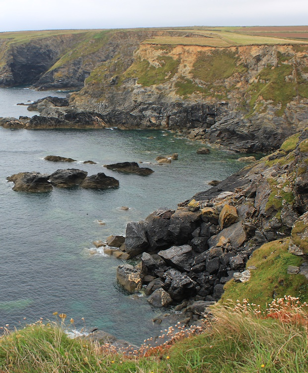 seal watching at Godrevy Point, Ruth walking the South West Coast Path