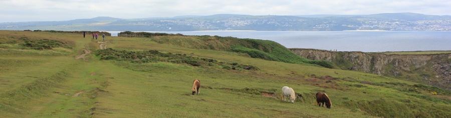 The Knavocks with Carbis Bay behind, Ruth's coast walk