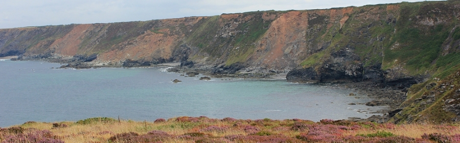 erosion and land slips, North Cliffs, Cornwall, Ruth Livingstone