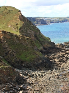 Cliff above Barrett's Zawn, Ruth on south west coat path, Cornwall