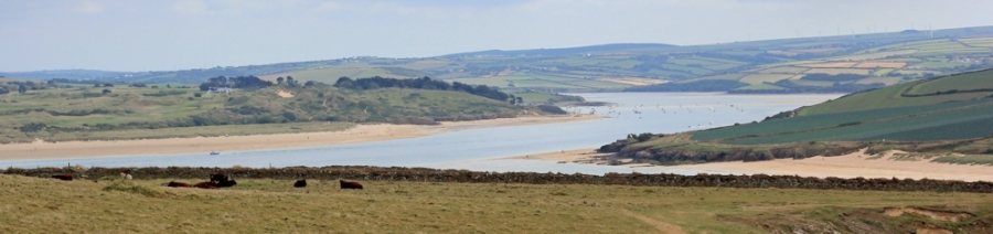 Looking over the fields to Padstow, Ruth walking the Cornish Coast