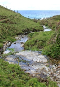 stream at Dannonchapel, Ruth's coastal walk, Cornwall