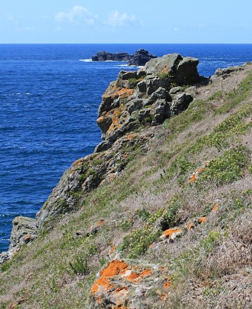 scramblin around slope on Dinas Head, Ruth walking the coast in Cornwall
