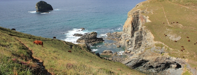 17 Backways Cove, Ruth on her coastal walk, North Cornwall