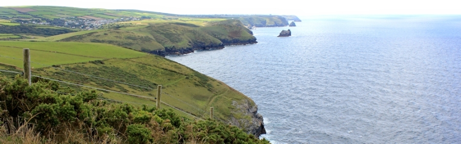 looking back to Tintagel, From Fire Beacon Point, Ruth's coastal walk