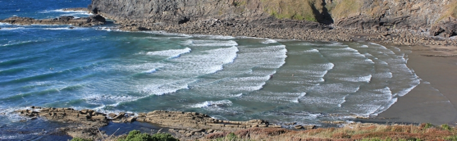 surfers on beach, Crackington Haven, Ruth's coastal walk in Cornwall
