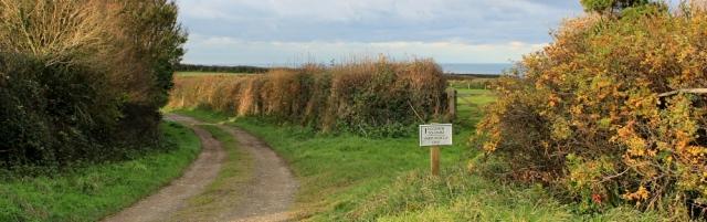 01 Morwenstow, track to coast, Ruth on her coastal walk around the UK