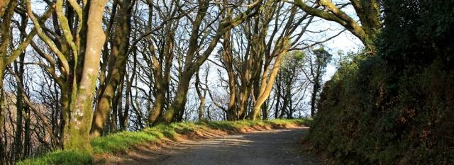 Hobby Drive, Ruth on the South West Coast Path, Clovelly