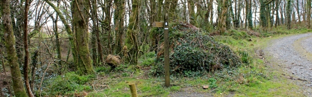Hobby Drive, end of, walking the South West Coast Path, Ruth Livingstone
