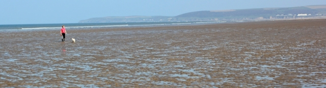dogwalker, empty sands, Westward Ho, Ruth's coast hike