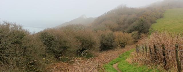 Above Worthygate Wood, Ruth's coastal walk, North Devon