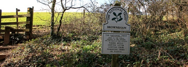 Brownsham Woods, towards Mouthmill Beach, Ruth Livingstone