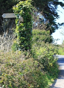 signpost, SWCP, Appledore, Ruth walking the coast