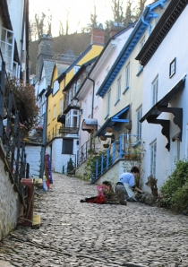 gardening, Clovelly style, Ruth on her coastal walk