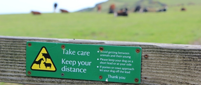 Field with warning sign, Ruth's coastal walk, Devon