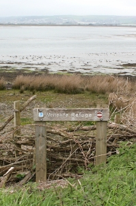 wildlife refuge, Ruth's coastal walk, Isley Marsh