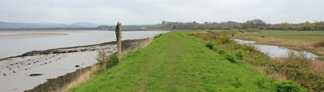long river bank, Ruth walking towards Barnstaple