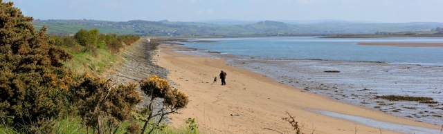 looking up estuary, River Taw, Horsey Island, Ruth's coast walk