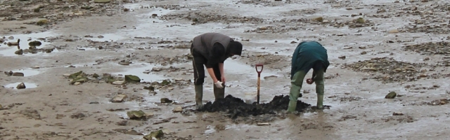 bait diggers, Ruth walking up the River Taw