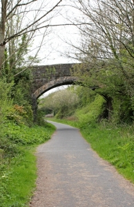 bridge over Tarka Trail, Ruth Livingstone