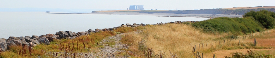 header, Hinkley Point, Ruth Livingstone