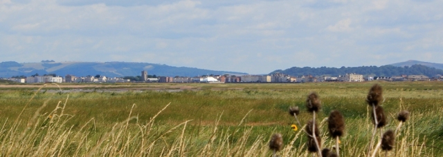 looking over to Burnham-on-Sea, mouth of River Parrett, Ruth Livingstone