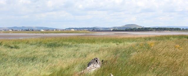 Stert Point, Ruth's coastal walk in Somerset