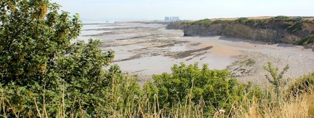 on cliffs, walking the Somerset Coast Path towards Hinkley Point, Ruth Livingstone