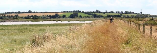 cyclist, River Parrett Trail, Ruth walking the coast, Somerset