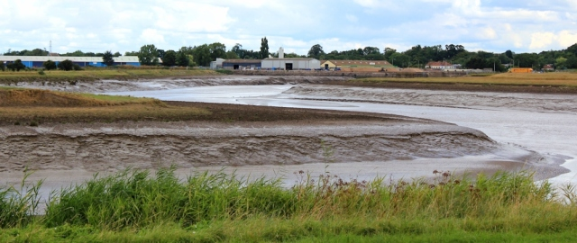 Dunball Wharf, River Parrett, Ruth's walk in Somerset