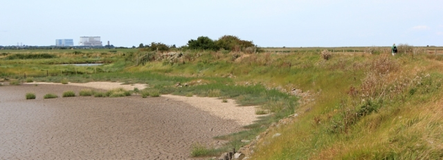 only other walker, Parrett Trail, Stert marshes, Ruth's coastal walk