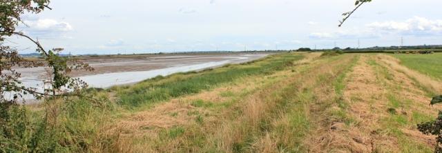 14 bank of River Parrett, Ruth on her coastal walk, Somerset