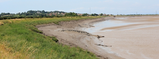 looking back at Combwich, Ruth walking the Parrett Trail, Somerset