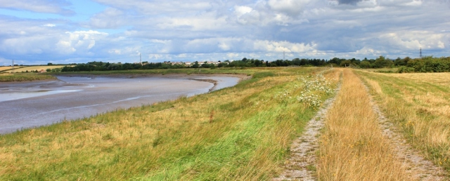 footpath up River Parrett, Ruth Livingstone
