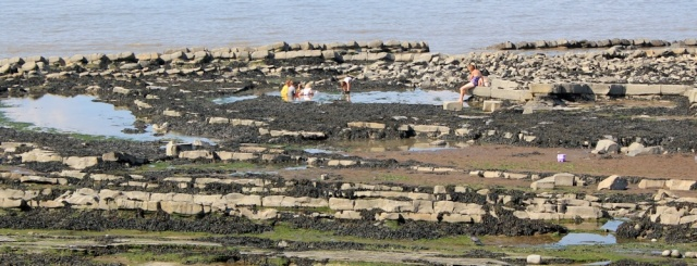 children in rockpools, Ruth on Quantock's Head, Somerset