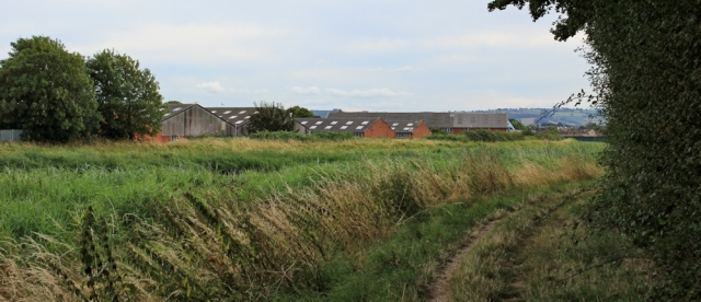 path around sewage works, Ruth on the River Parrett Trail