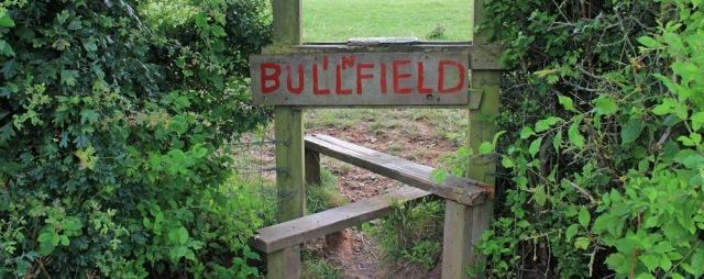 bull in fields sign, Parrett Trail