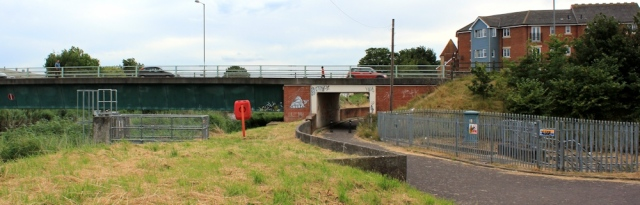 approach to Bridgwater, Ruth walking the Parrett Trail