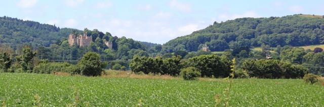 Dunster Castle across the fields, Ruth Livingstone