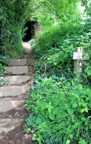 b03 path up steps, Ruth walking the South West Coast Path, Hangman