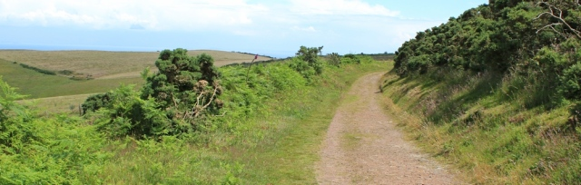 motorway over Selworthy Beacon, Ruth on the coast