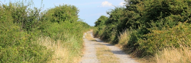 boring track, towards Steart, Ruth on the West Somerset Coast Path