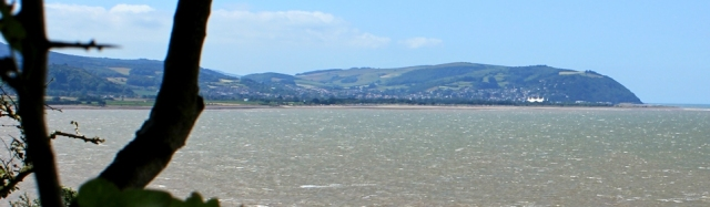 view to Minehead, from trees, Ruth's coastal walk to Watchet