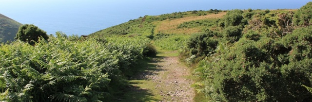 on Holdstone Down, Ruth walking near Combe Martin, SWCP