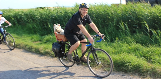 dog in bike basket, Ruth's coastal walk