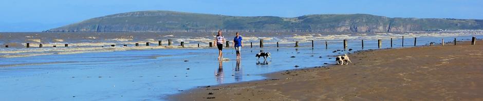 header, Brean Down, Ruth's coastal walk