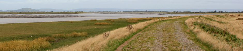 header, Ruth Livingstone walking up the River Parrett