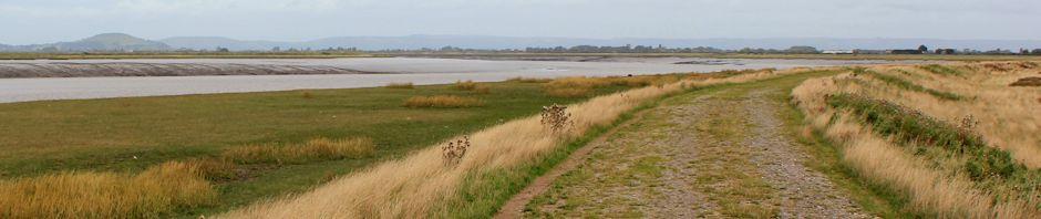 header, Ruth Livingstone walking up the River Parrett
