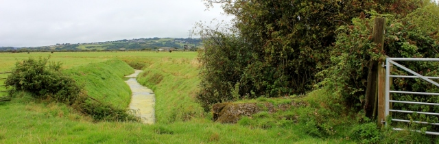 rural views, walking through North Somerset, Ruth's coastal walk