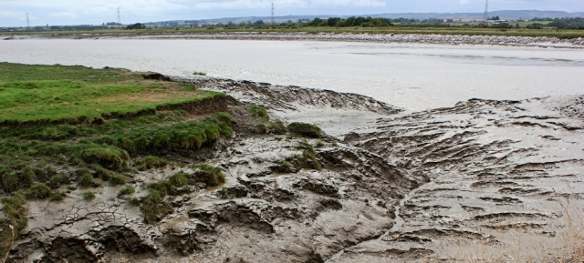 mud on the River Parrett, Ruth's coastal walk